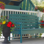 Bench surrounded by Flowers in Front of Robber's Roost Motel